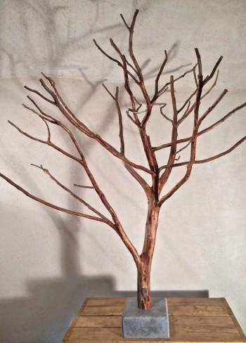 arbre de Cade N°12