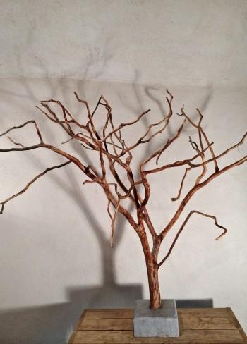 arbre de Cade N°10